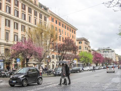 Адреса супермаркетов в Риме