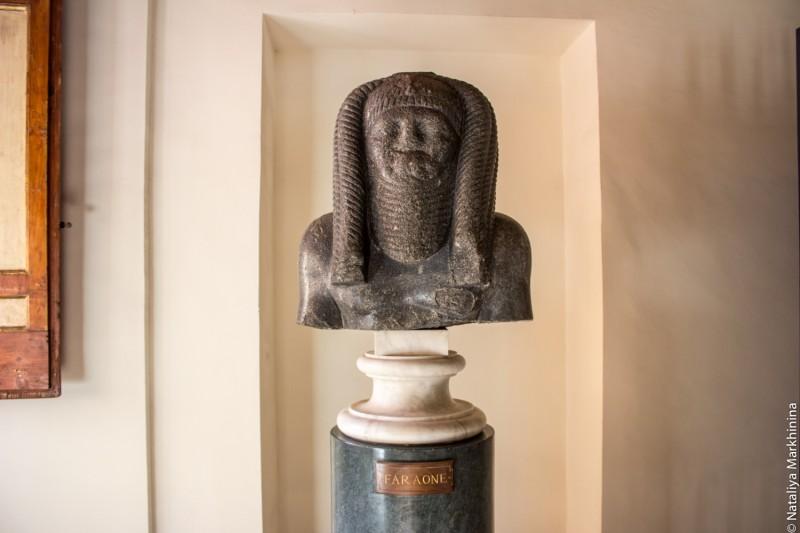 Faraone-7737